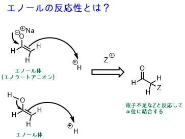 エノールの反応性