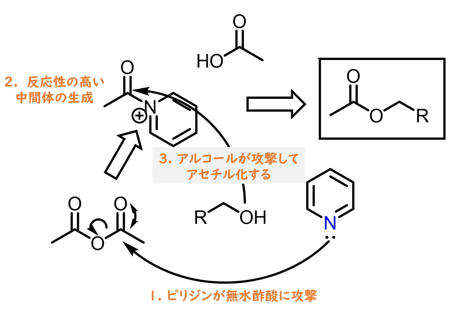 アセチル化におけるピリジンの効果