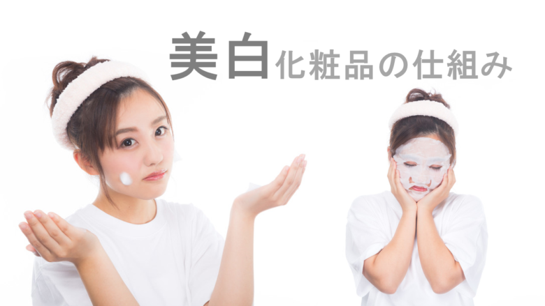 美白化粧品の仕組みと有効成分を科学的に解説。