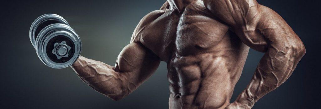 ステロイド筋肉