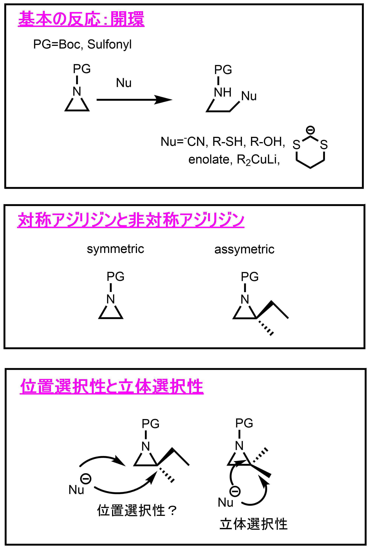 アジリジンの基本の反応