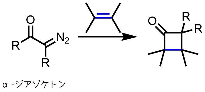 Wolff転位を利用したシクロブタノン合成