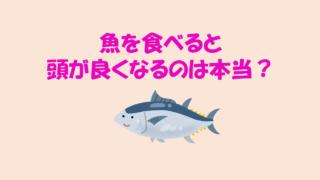 魚を食べると頭がよくなる