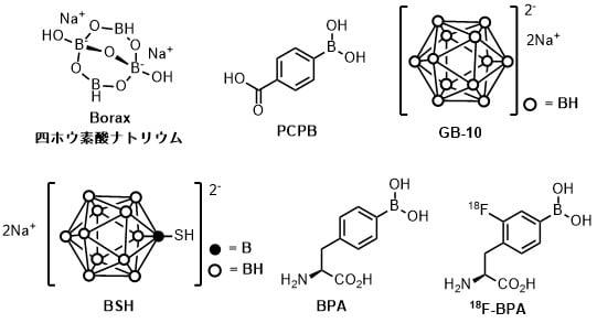 中性子捕捉療法に使われるホウ素化合物一覧