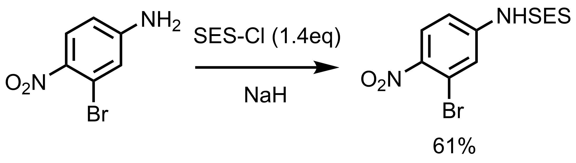 SES反応例4