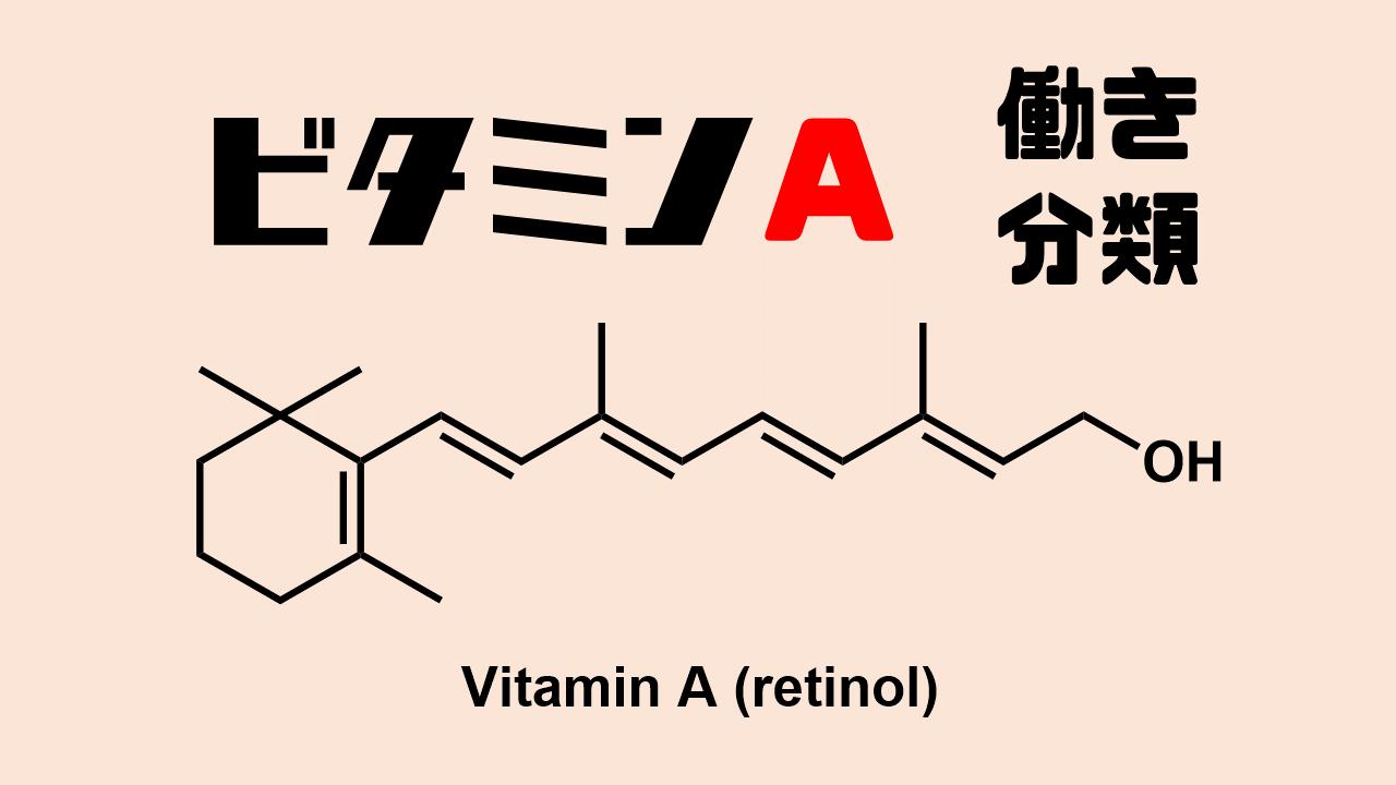 ビタミンAの働きと分類