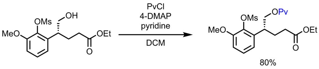 Pv基の保護例1