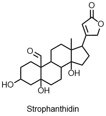 ストロファンチジンの構造