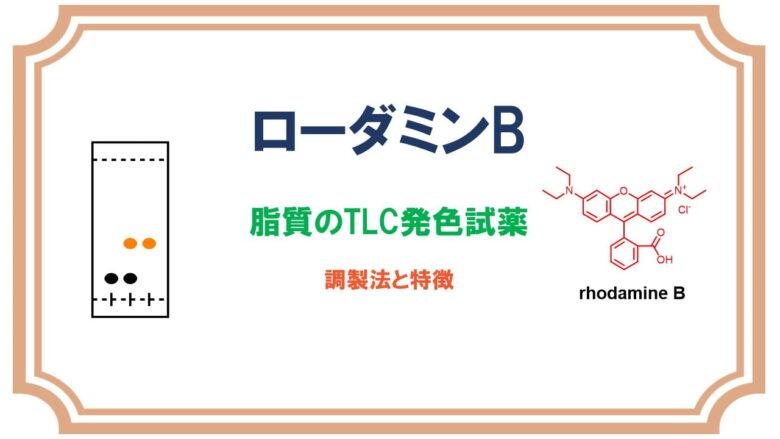 ローダミンB:脂質や可塑剤の検出!TLC発色試薬の調製法と特徴