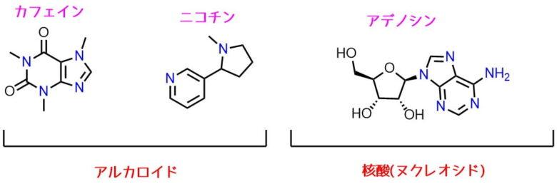 アルカロイドの分類