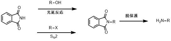ガブリエル合成の概略