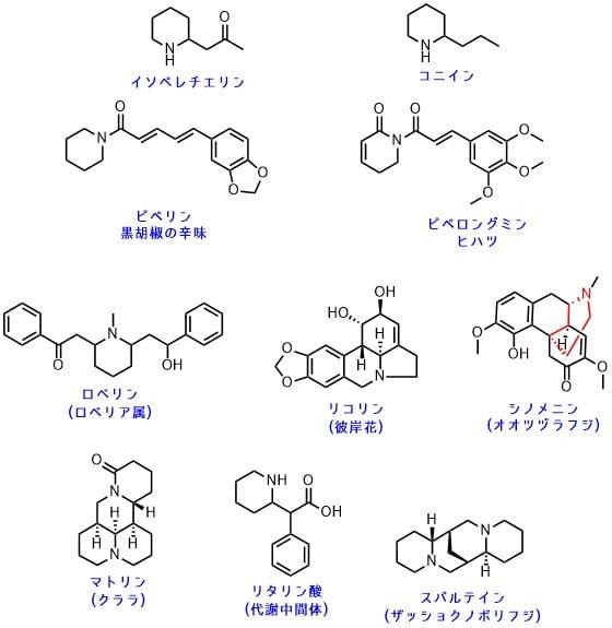 ピペリジンアルカロイドの一覧