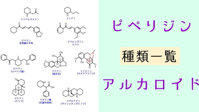 ピペリジンアルカロイドの化学 種類 一覧