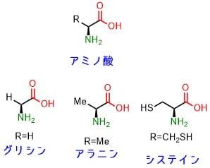 側鎖アミノ酸の構造