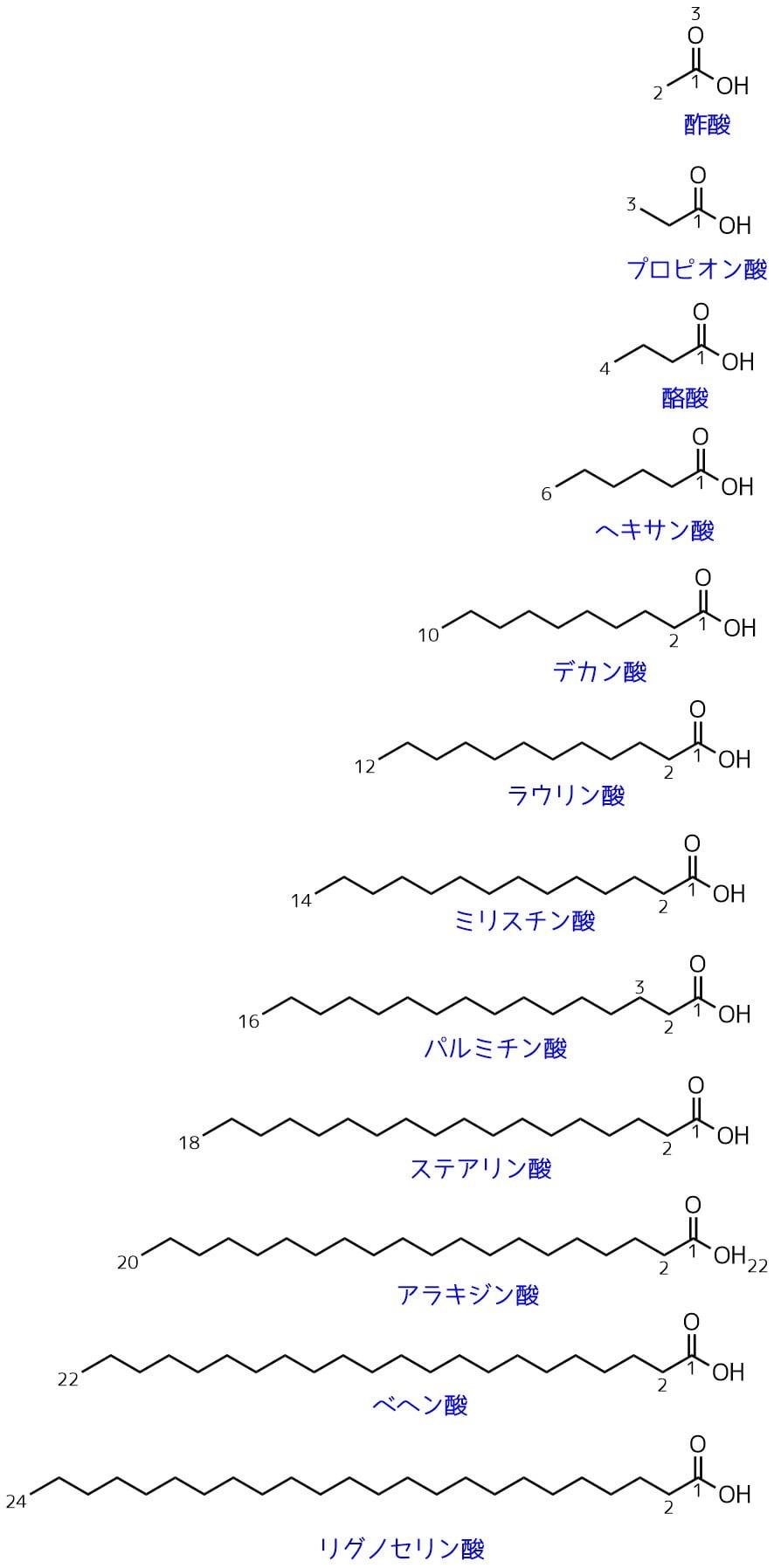 単純脂肪酸の構造