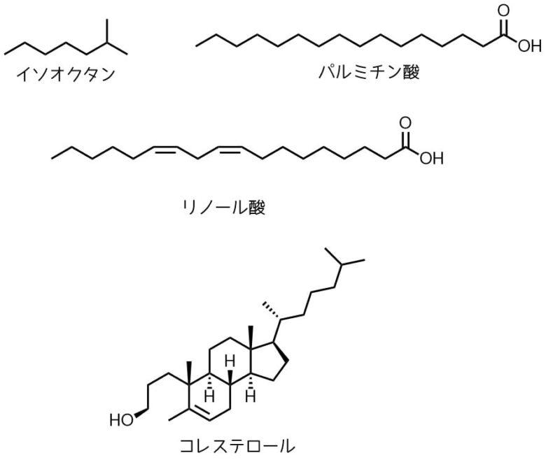 炭素鎖が脂質の特徴