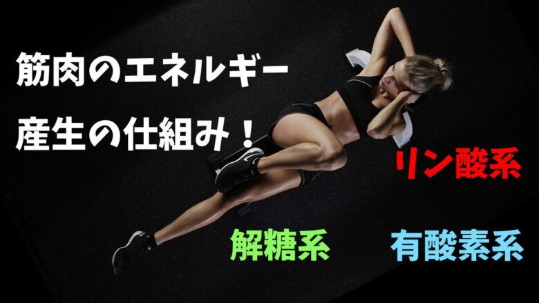 筋肉エネルギー産生の仕組み