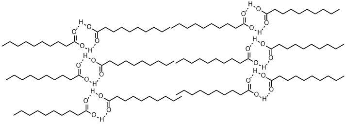 脂肪酸の二量体構脂肪酸の二量体構造