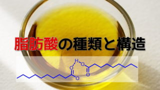 脂肪酸の種類と構造