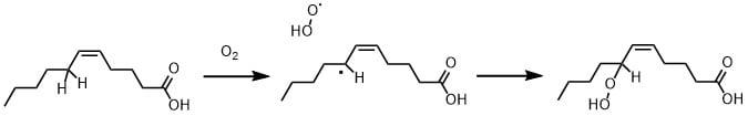 脂肪酸の自動酸化
