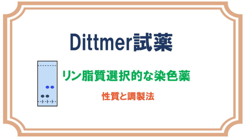 Dittmer試薬でリン脂質を染色するTLCの染色液