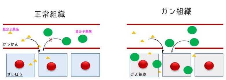 EPR効果の概略図