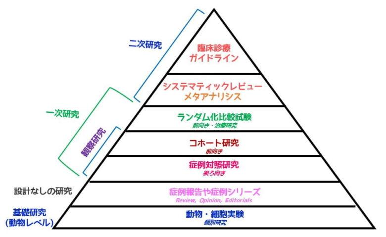 エビデンスピラミッド