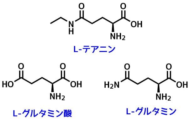 テアニンとグルタミン酸
