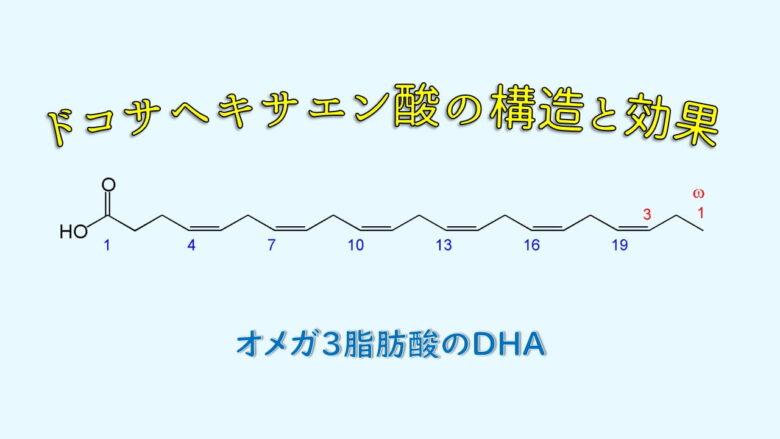 ドコサヘキサエン酸 (DHA) の構造と効果