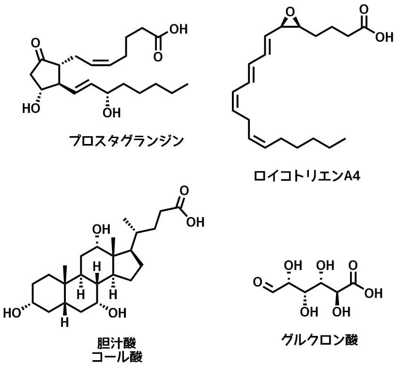 カルボン酸の生理活性分子例
