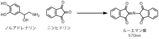 ニンヒドリンによるアミン定量