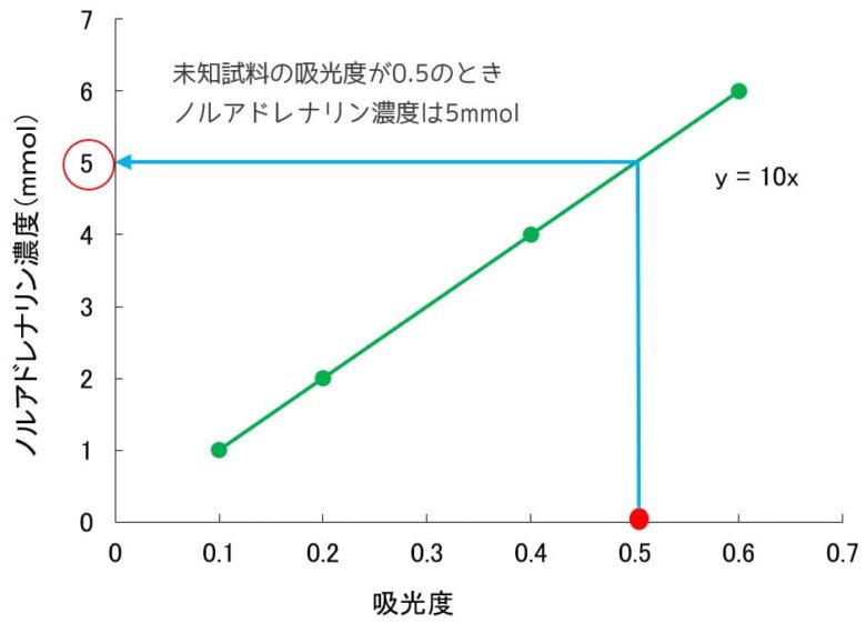 ノルアドレナリンの定量