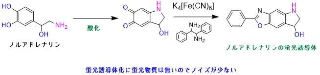 ノルアドレナリンの蛍光誘導体化直接法