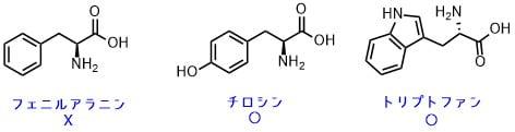 芳香族アミノ酸一覧