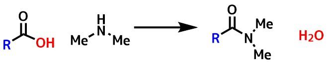アミド合成モデル