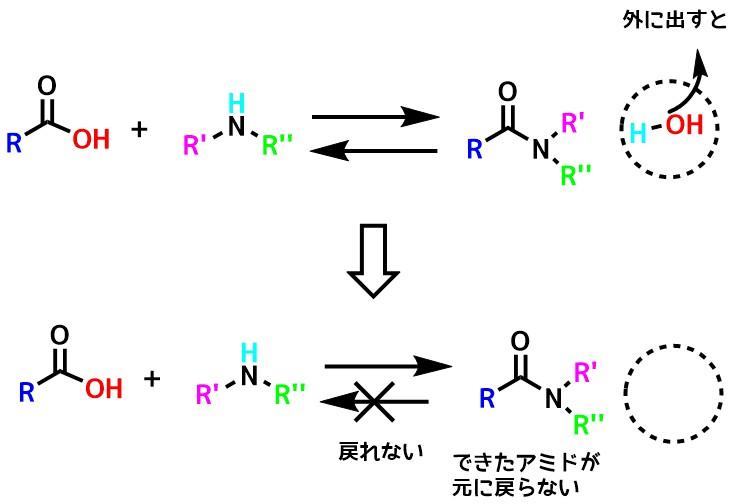 カルボン酸とアミンとの反応は可逆的