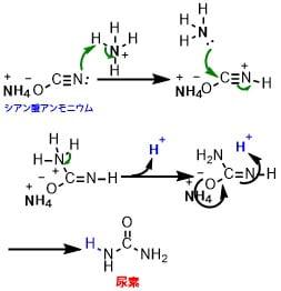 シアン酸アンモニウムから尿素の合成