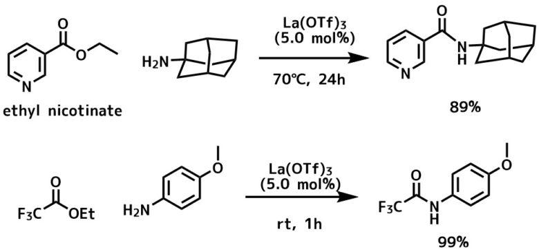 ランタノイドトリフラートによる直接的アミド化