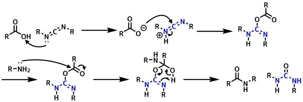 DCC反応機構