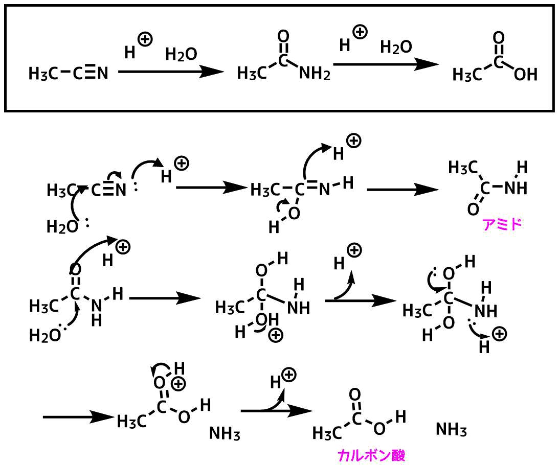 アセトニトリルの加水分解反応機構