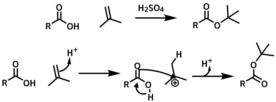 ルボン酸の付加反応機構イソイソブテンのカルボン酸の付加反応機構
