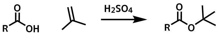 カルボン酸のイソブテンへの付加反応