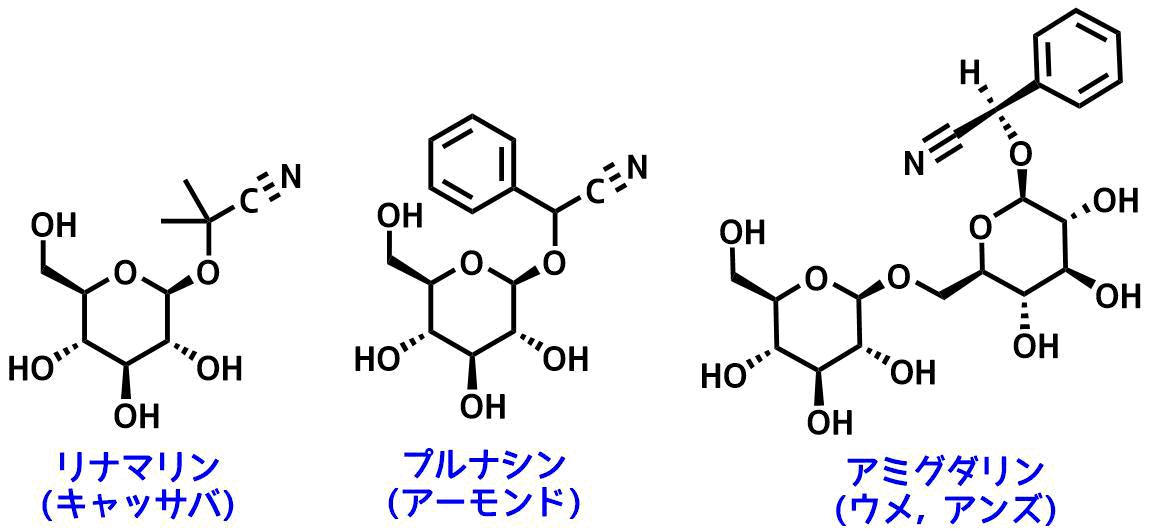 天然中に含まれるシアノヒドリン