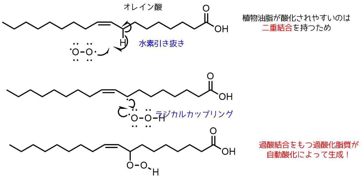 脂質の過酸化