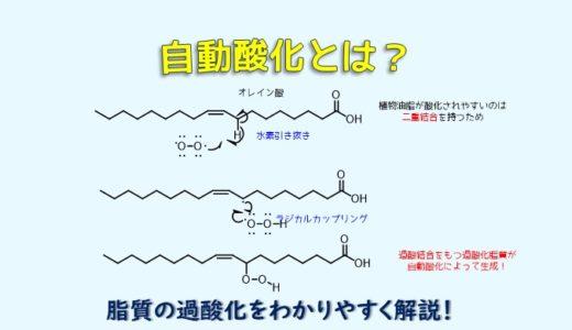 自動酸化をわかりやすく解説!油脂、脂質が酸敗するメカニズム