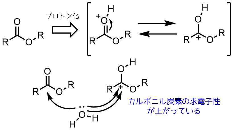 酸性条件でのカルボニル炭素の求電子性増加