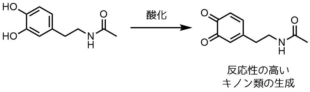 N-アセチルドーパミンキノン類の生成