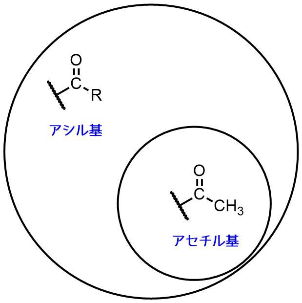 アシル基とアセチル基の違い