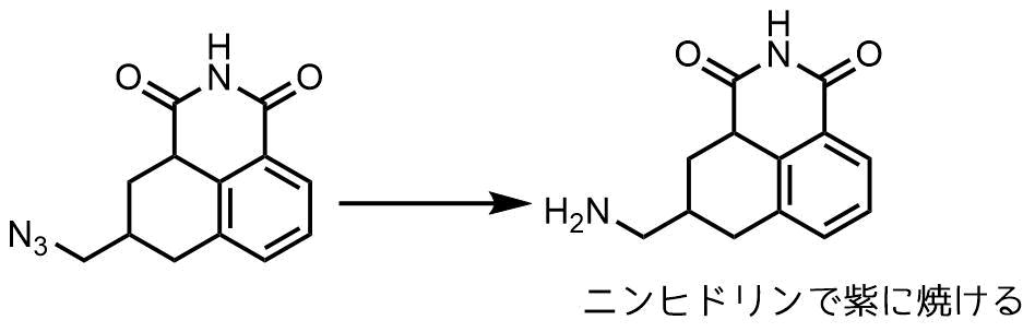ニンヒドリン陽性の化合物
