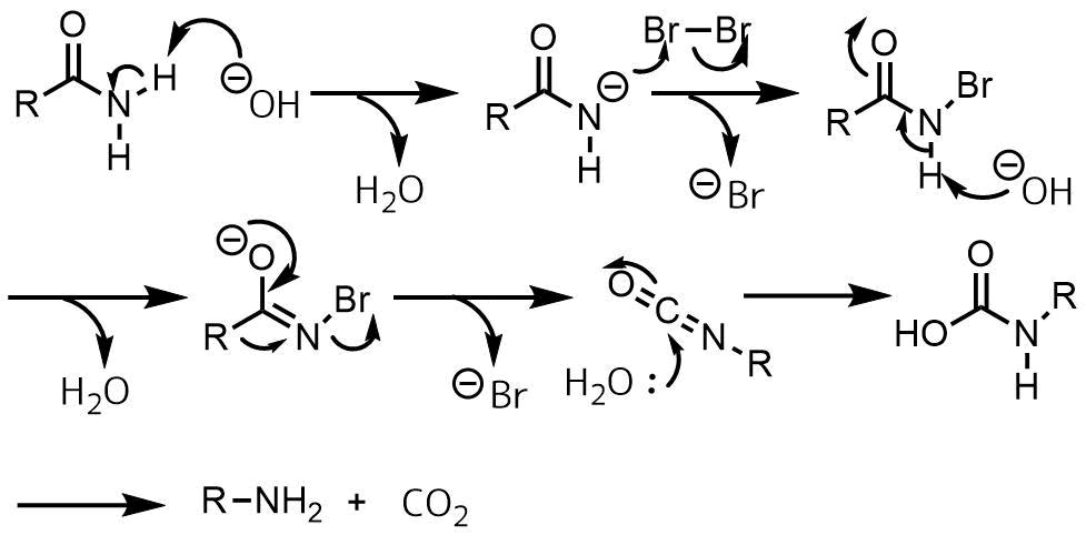 ホフマン転位の反応機構